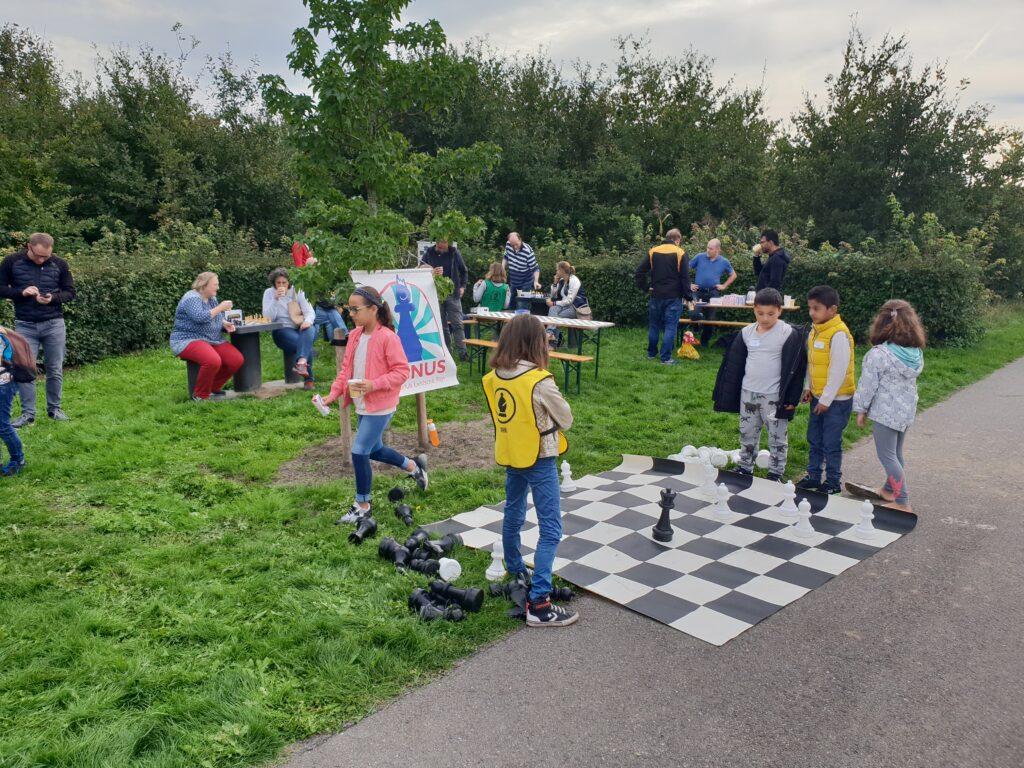 Gezellig schaken in het park