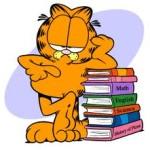 Huiswerk Garfield