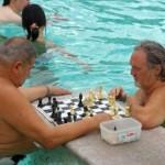 Oude mannen schaken